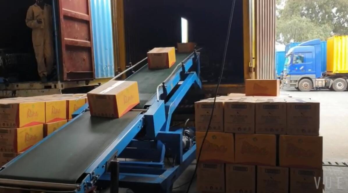 Portable Truck Loading Unloading Conveyor for Food and Beverage Factory